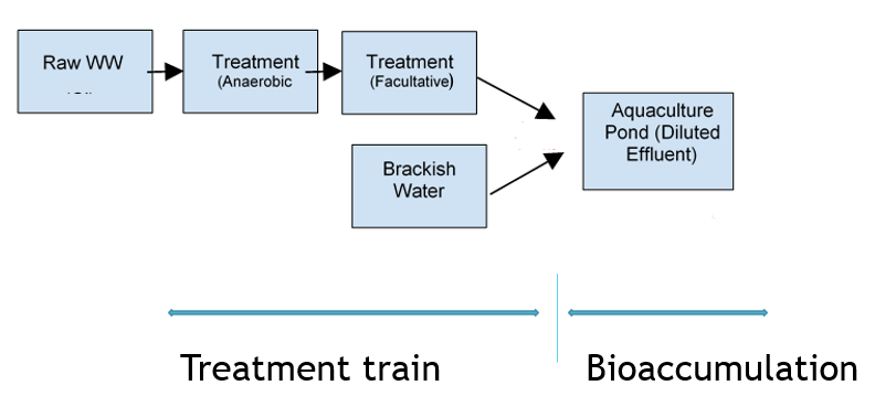 Aquaculture case study for Wiki RISK MODEL Figure1.PNG